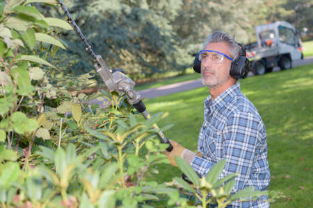 groundskeeper: cutting the hedge