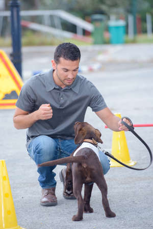 Man training dog Stock Photo