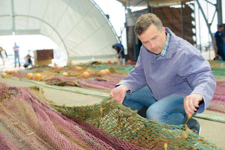 untangle: Fisherman untangling nets Stock Photo