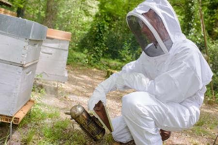 Beekeeper holding smoker Stock Photo