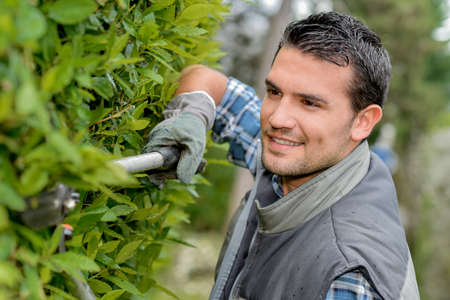 paysagiste: le jardinier heureux