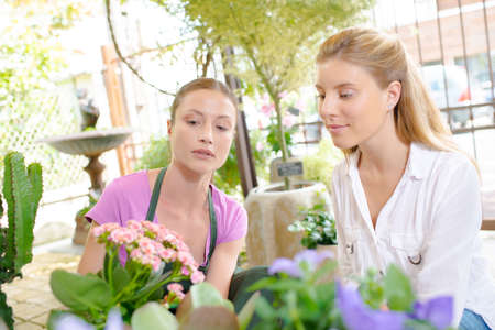 deliverer: Florist teaching her young intern