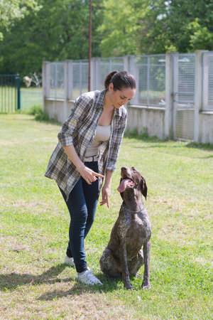 best shelter: kennel volunteer playing with abandoned older dog