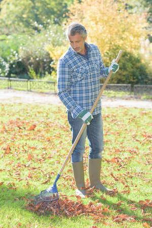 Middle aged man raking leaves Stock Photo