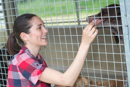 feeding through: young woman feeding her dog on street Stock Photo
