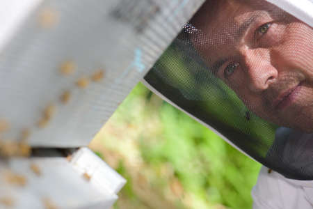 Closeup of beekeepers face behind veil