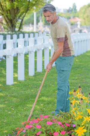 Man hoeing flowers in cemetery