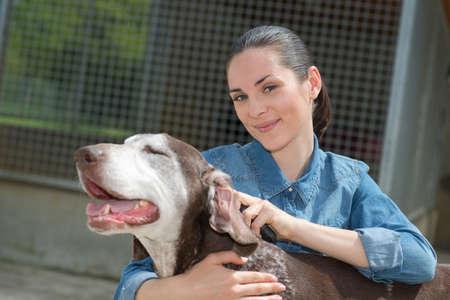 slumbering: female vet stroking dog at animal shelter Stock Photo