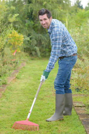 raking the grass Stock Photo