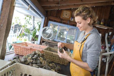 shuck: beautiful woman opening an oysters Stock Photo
