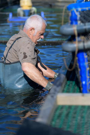 fish farm employee at the dusk of his career