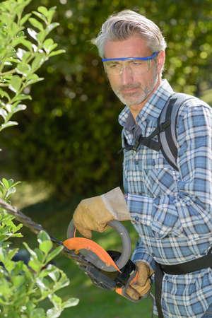 Professionele tuinman snijden heg