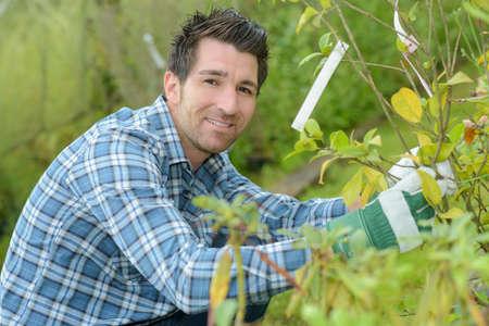 beau jeune homme jardinier aménagement paysager et soin des plantes