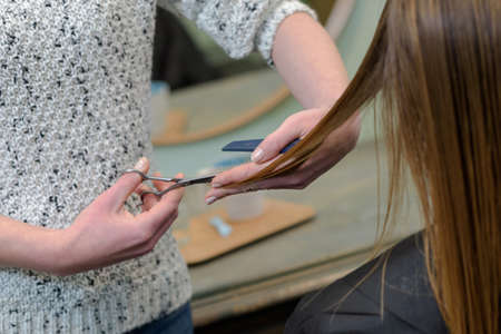 haircutting: woman having her hair cut at the hairdressers Stock Photo