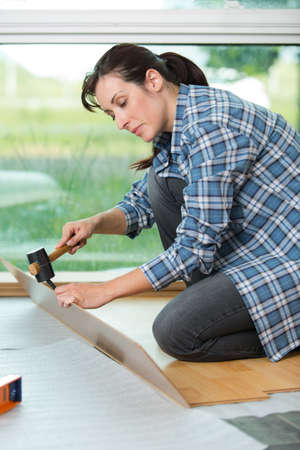 substrate: woman installing new laminate wood flooring Stock Photo