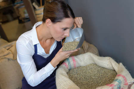 redneck: female coffee maker with burlap sacks smelling coffee beans
