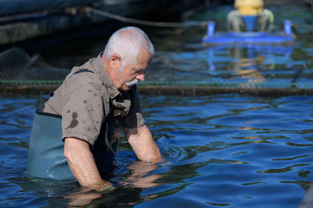 man at a trout fish farm