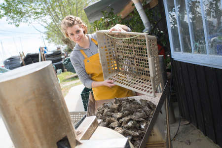 woman oyster harvester Stock Photo