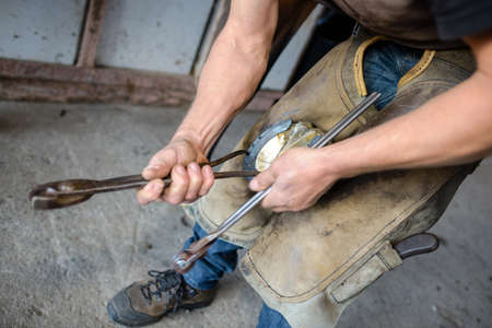 farrier putting horse shoe Stock Photo