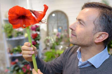 male florist looking at a gumamela flower