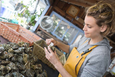 oyster farmer cleaning her produce
