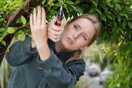 female gardener pruning the tree