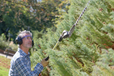 Man using extendable hedgecutter 写真素材
