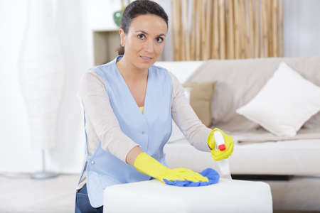 woman cleaning sofa at home Banque d'images