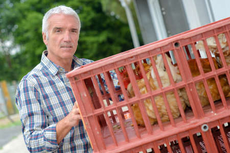 Farmer holding plastic crate containing chickens