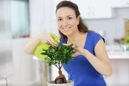 a woman watering bonsai tree