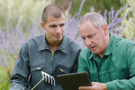 Male gardener checking the tablet