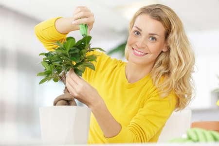 a woman is trimming a bonsai
