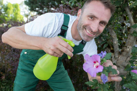 happy worker spraying flowers during pest control Фото со стока
