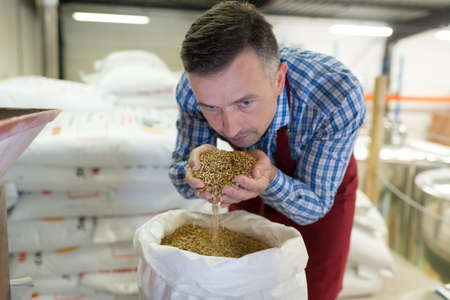 a man smelling malt seeds