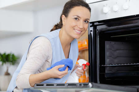 woman cleaning oven with spray and cloth Banco de Imagens