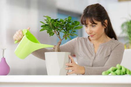 woman watering bonsai