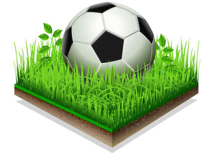Detailed illustration of a Soccer ball isolated on the Grass Plate Isolated On White Background Stock Vector - 18389055