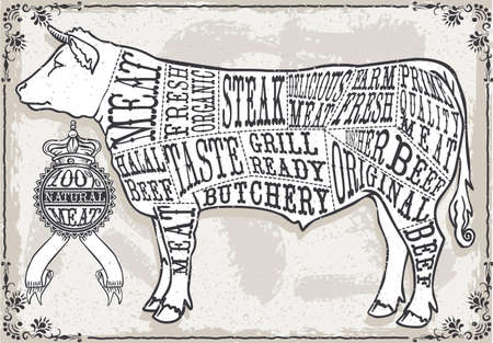 butchery: Detailed illustration of a Vintage Pastel Page of Cut of BeefIllustration