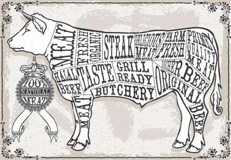 carniceria: Ilustración detallada de un Pastel Página de Corte de BeefIllustration Vintage