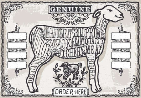 Detailed illustration of a Cut of Lamb on Vintage Page Vector