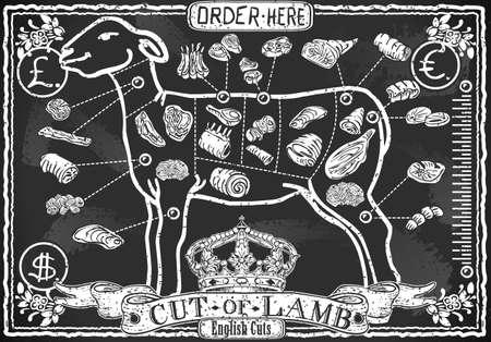 Illustrazione dettagliata di un taglio di agnello su Blackboard Vintage Vettoriali