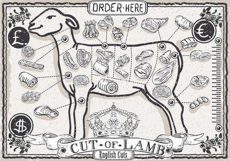 Detailed illustration of a Cut of Lamb on Vintage Page Illustration