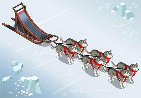Gedetailleerde illustratie van een isometrische sledehonden in Front View on Ice