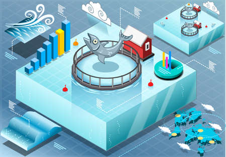 farmed: Detailed illustration of a Isometric Infographic of Sea Farmed Fish Illustration