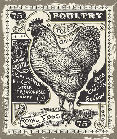 Detailed Illustration of a Vintage Poultry and Eggs Advertising Page Illustration in EPS10 with color space in RGB.