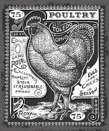 chicken: Detailed Illustration of a Vintage Poultry and Eggs Advertising on Blackboard Illustration in EPS10 with color space in RGB.