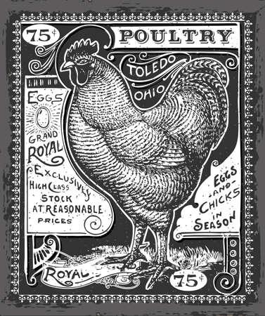 Gedetailleerde illustratie van een Vintage Pluimvee en Eieren Adverteren op Blackboard Illustratie in EPS10 met kleur in RGB.