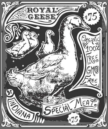 geese: Detailed Illustration of a Vintage Goose Advertising Blackboard
