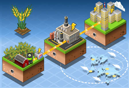 Biomass: Detailed illustration of a Isometric Infographic Biomass Source Renewable Energy Diagram