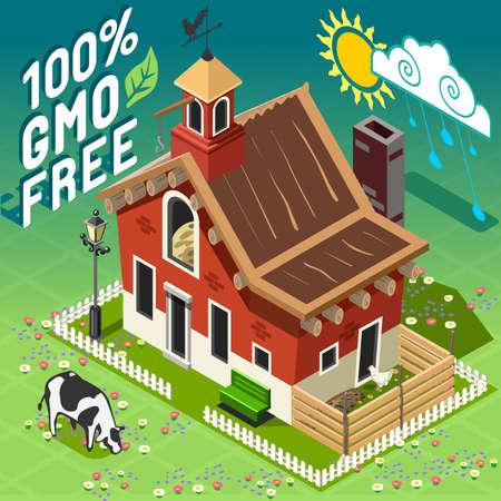 old barn: Isometrica di alta qualit� agricoltura OGM FREE. Americano tradizionale vecchio granaio 3d Infographic set di icone vettoriali. Fattoria rurale con pollo e Cow.